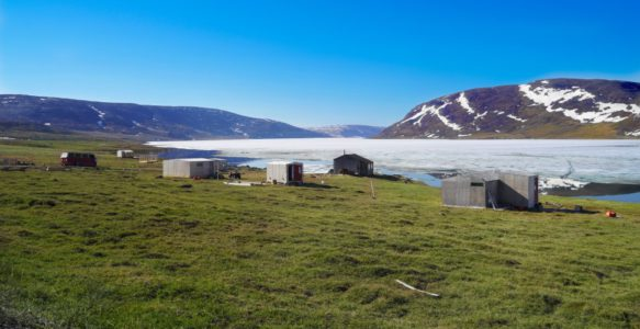 Trophic Cascades and Food Insecurity in Indigenous Arctic Populations